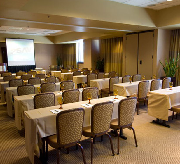 Platinum Diamond Meeting Room